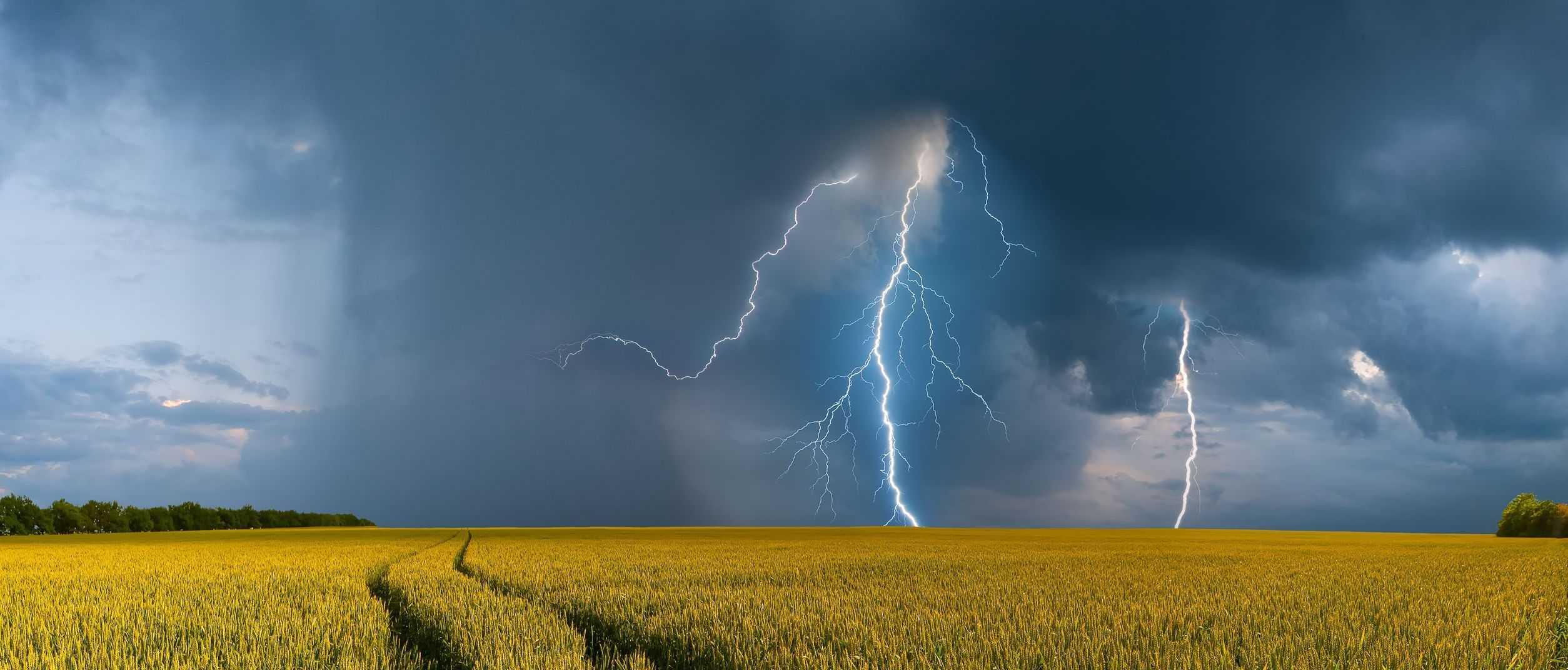 Letná búrka nad repkou